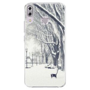 Plastové puzdro iSaprio - Snow Park - Asus ZenFone 5Z ZS620KL