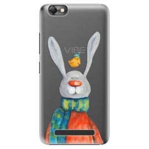 Plastové puzdro iSaprio - Rabbit And Bird - Lenovo Vibe C