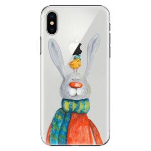 Plastové puzdro iSaprio - Rabbit And Bird - iPhone X