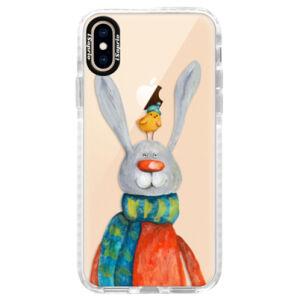 Silikónové púzdro Bumper iSaprio - Rabbit And Bird - iPhone XS