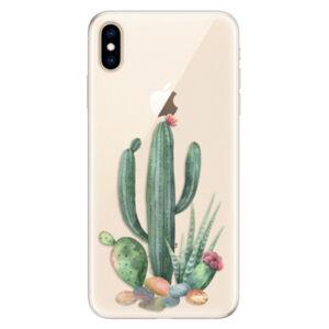 Silikónové puzdro iSaprio - Cacti 02 - iPhone XS Max